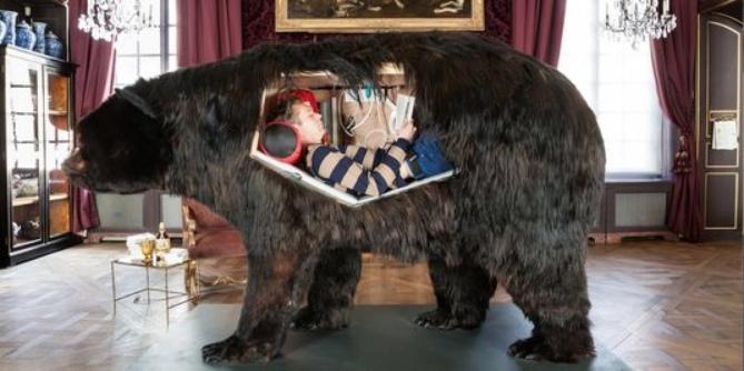 El oso.